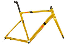 Cannondale 2020 CAAD13 Disc Frameset (Gold)