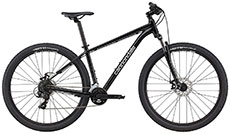 Cannondale 2021 Trail 8 (Grey)
