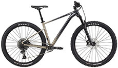 Cannondale 2021 Trail SE 1