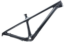 Yeti 2021 ARC T-Series 29 Frame (Raw)