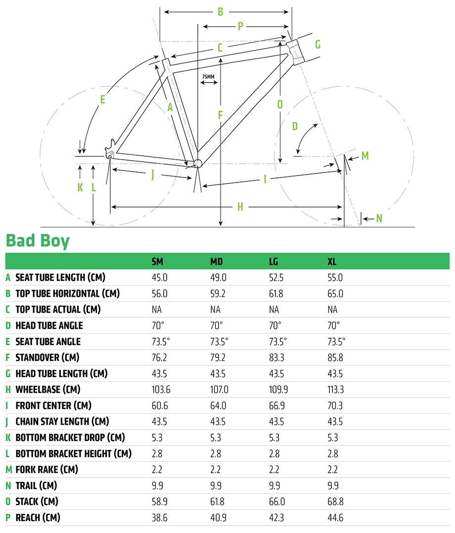 Cannondale 2020 Bad Boy Frame Geometry